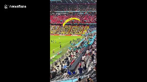 item: 'Greenpeace activist crash-lands onto pitch after hitting fans at Euro 2020 game'