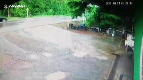 item: 'Driver survives horror pickup truck crash thanks to seatbelt'