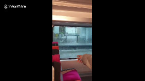 item: 'Train passes through flooded station after severe storm hits Paris area'